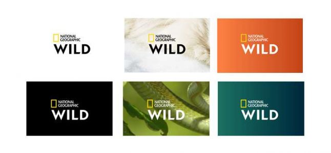 Nat Geo Wild devient National Geographic Wild