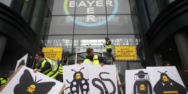 Manifestations contre Bayer-Monsanto en France et dans le monde