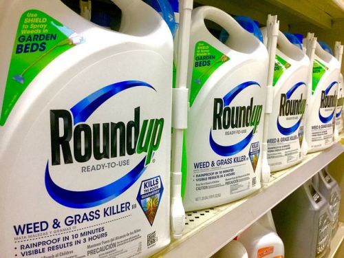 Interdiction du glyphosate:  que dit la science ?