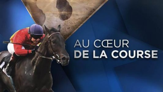 Replay - Au coeur de la course du 15 novembre 2017