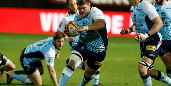 Rugby - Pro D2 - Usap - Alex Brown prolonge à Perpignan
